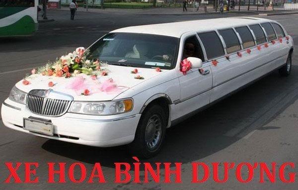 xe hoa bình dương